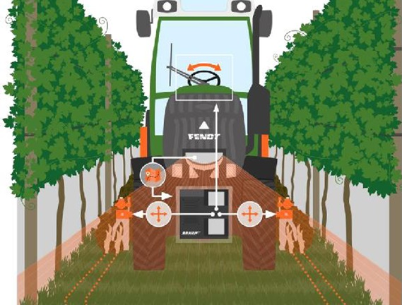 Automatic control system of vineyard implements for removing weeds on Fendt 200 V Varo - Braun